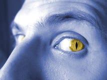 Occhi 2 di colore giallo fotografie stock