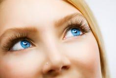 Occhi azzurri Fotografie Stock