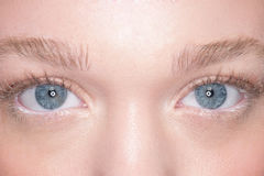 Occhi azzurri adorabili di una giovane donna Fotografia Stock Libera da Diritti