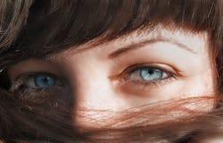 Occhi azzurri che guardano tramite i capelli fotografia stock