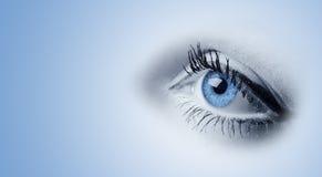 Occhi azzurri femminili Immagine Stock Libera da Diritti