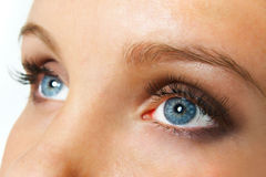 Occhi azzurri femminili fissare Fotografie Stock Libere da Diritti