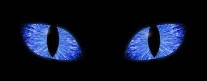 Sezione - Tara & simili > - Pagina 2 Occhi-azzurri-luminosi-con-le-pupille-verticali-una-macro-illustrazione-del-dettaglio-di-due-143174572
