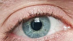 Occhi azzurri maschii Fotografie Stock Libere da Diritti