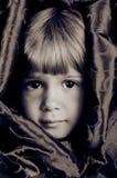 Occhi del Brown Fotografia Stock