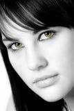 Occhi del gatto Immagini Stock