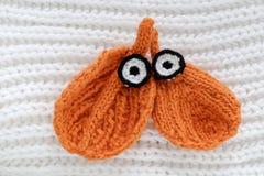 Occhi dell'inverno, fondo semplice dalla foglia tricottata Immagini Stock Libere da Diritti