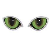 occhi di gatto verdi di vettore Fotografie Stock