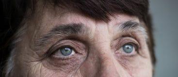 Occhi di una donna senior fotografia stock libera da diritti