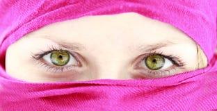 Occhi femminili Immagine Stock