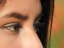 Occhi femminili Fotografia Stock Libera da Diritti