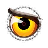 Occhi nelle sue viste Fotografia Stock