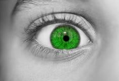 Occhi perspicaci di sguardo Fotografia Stock