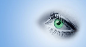 Occhi verdi femminili immagine stock