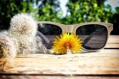 Occhiali da sole bianchi Fotografia Stock Libera da Diritti
