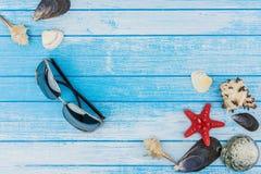 Occhiali da sole delle decorazioni delle conchiglie e stella di mare su blu e su bianco Fotografia Stock