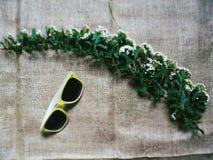 Occhiali da sole e un ramoscello dei fiori Fotografie Stock