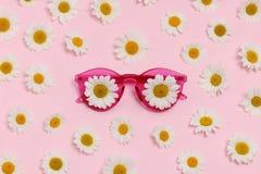 Occhiali da sole rosa con le margherite Fotografia Stock