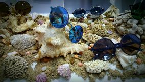 Occhiali da sole su fondale marino Immagini Stock