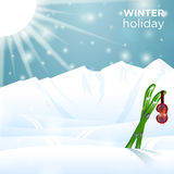 Occhiali di protezione soleggiati dello sci di vacanza invernale su corsa con gli sci Immagini Stock