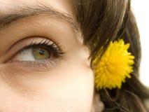 Occhio Fotografia Stock
