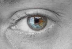 Occhio Fotografia Stock Libera da Diritti
