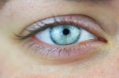 Occhio azzurro Immagini Stock