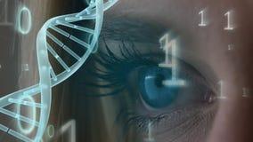 Occhio azzurro circondato dal codice binario e dall'elica di filatura del DNA stock footage