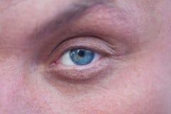 Occhio azzurro maschio fotografia stock libera da diritti