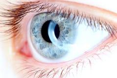 Occhio azzurro nella macro, flash dell'anello Immagini Stock Libere da Diritti