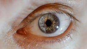 Occhio blu dell'uomo con la lente a contatto immagine stock