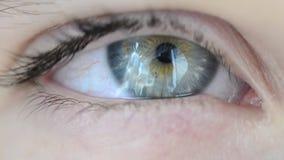 Occhio blu-verde stock footage