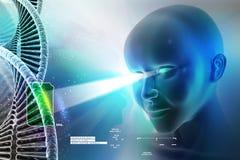 Occhio che guarda avanti contro le strutture del DNA Fotografie Stock Libere da Diritti