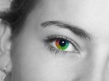 Occhio colorato fotografia stock libera da diritti