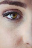 Occhio con l'eye-liner e l'ombretto Immagine Stock