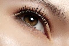 Occhio con trucco dell'indicatore luminoso di modo, cigli lunghi del primo piano Fotografia Stock
