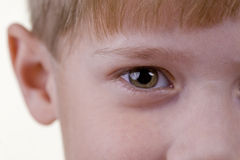 Occhio del bambino Fotografia Stock