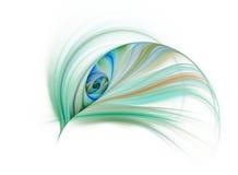 Occhio del pavone Fotografia Stock