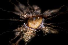 Occhio del rettile Fotografia Stock Libera da Diritti