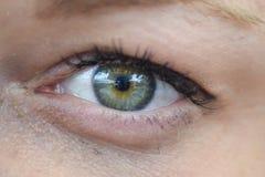 Occhio del ` s della donna Fotografia Stock