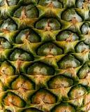 Occhio dell'ananas, gusto agrodolce immagini stock
