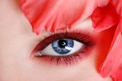 Occhio della donna fotografie stock libere da diritti