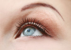 Occhio della donna blu Fotografie Stock