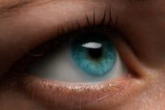 Occhio della donna con la lente a contatto che si applica, macro Allievo dilatato blu, Immagine Stock