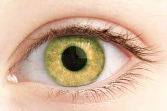 Occhio della fine della persona in su Fotografia Stock Libera da Diritti