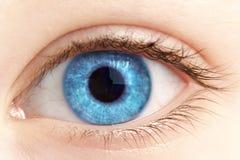 Occhio della fine della persona in su Immagini Stock