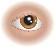 Occhio della parte del corpo Immagine Stock