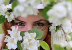 Occhio della ragazza dietro il fiore dell'albero Fotografie Stock