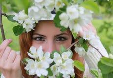 Occhio della ragazza dietro il fiore dell'albero Immagini Stock