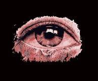 Occhio della spia Fotografia Stock